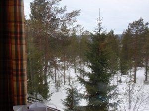 オウナスバーラ窓からの眺め