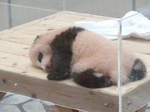 結浜 寝てる