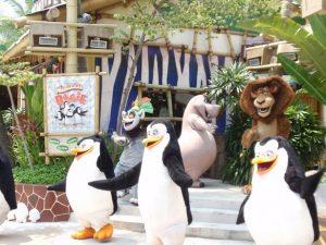 ペンギンズのショー