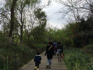 成都パンダ基地遊歩道