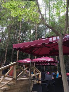 成都パンダ基地カフェ