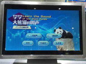パンダの鳴き声学ぶゲーム