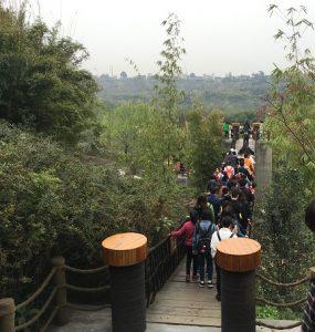 成都パンダ基地のつり橋