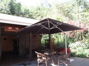 熊猫谷のカフェ