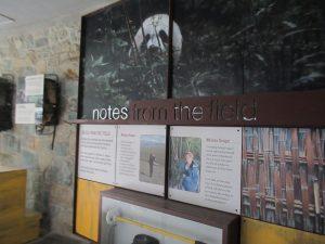 スミソニアン動物園パンダ舎周りの展示