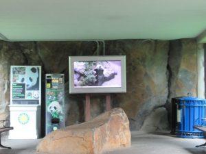 スミソニアン動物園ライブカメラ