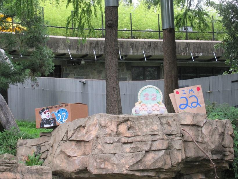 スミソニアン動物園ティエンティエン誕生日22歳